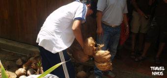 Κατασκευάζοντας γλυκά από καρύδες στον Μεκόνγκ Δέλτα (Mekong Delta) του Βιετνάμ