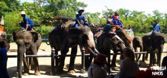 Ζωολογικός κήπος Σαμπράν στην επαρχία της Νακόν Πατόμ