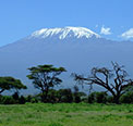 Κιλιμάντζαρο (Kilimanjaro)
