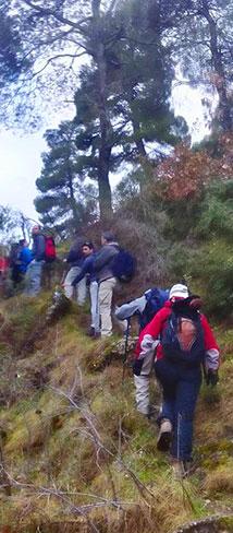 Ορειβατικός Σύλλογος Αιγίου