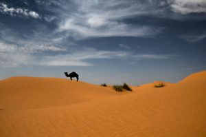 Σαχάρα στην Τυνησία