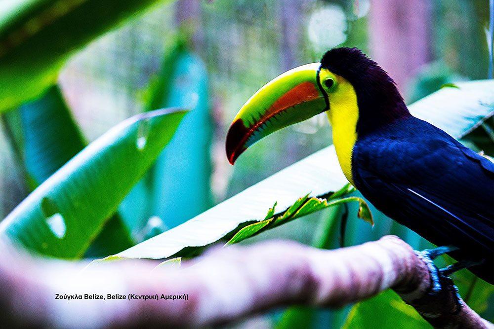 Belize © Dimitris Balatsouras