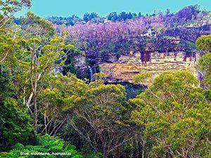 Εθνικό Πάρκο Blue Mountain, Αυστραλία