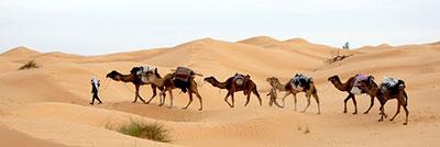 Σαχάρα Sahara