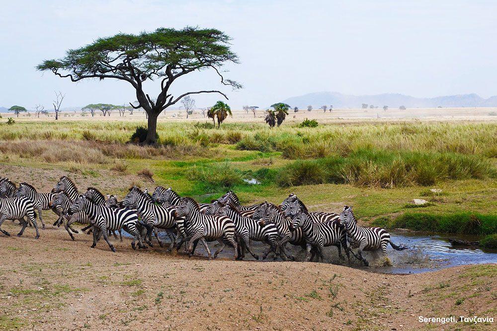 Tanzania © Dimitris Balatsouras