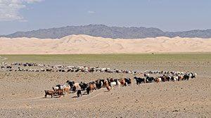 Gobi Desert, spanning southern Mongolia