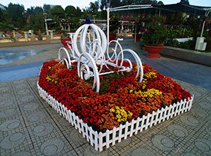 Dalat Flower Garden Park in Dalat Vietnam