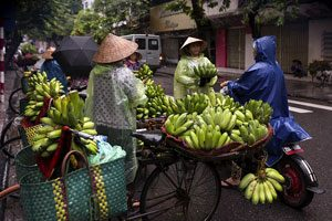 Ανόι Hanoi Street Food, Vietnam