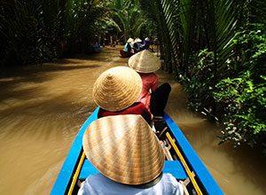 Δέλτα του Μεκόνγκ, Mekong Delta