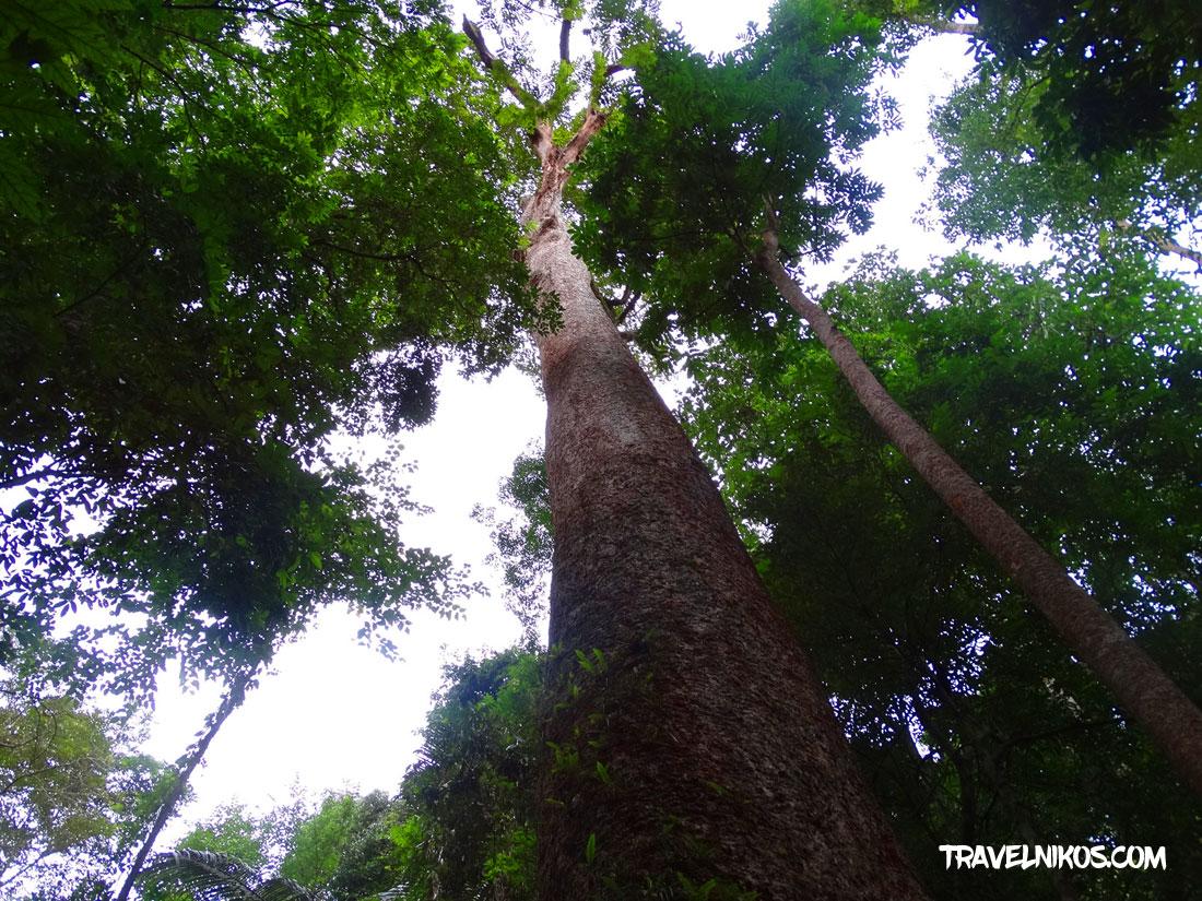 Εθνικό Πάρκο Taksin Maharat