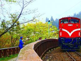 Alishan Forest Railway, Taiwan