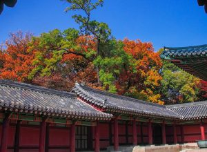 Changdeokgung Palace Complex, Jongno-gu, Seoul, South Korea