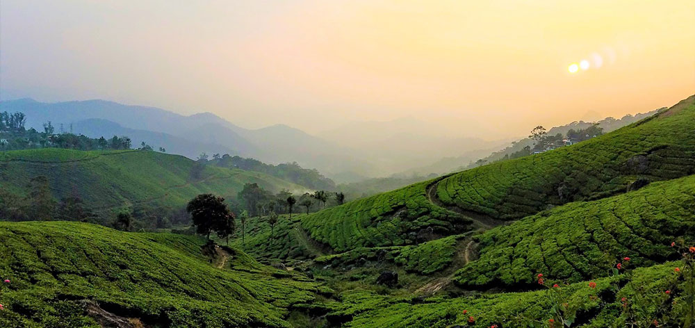 Dzukou Valley, Nagaland and Manipur, natural environment in India