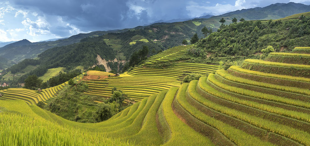 Muong Lo Valley in Northern Vietnam, the second largest in Vietnam