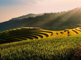 Tu Le Valley Vietnam, terraced rice fields, Khau Pha, Khau Than and Khau Song mountains